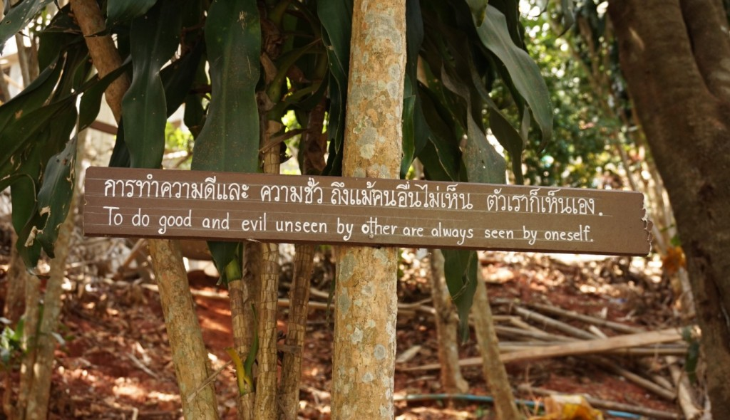 Great quotes on the way to Doi Sutheps meditation center