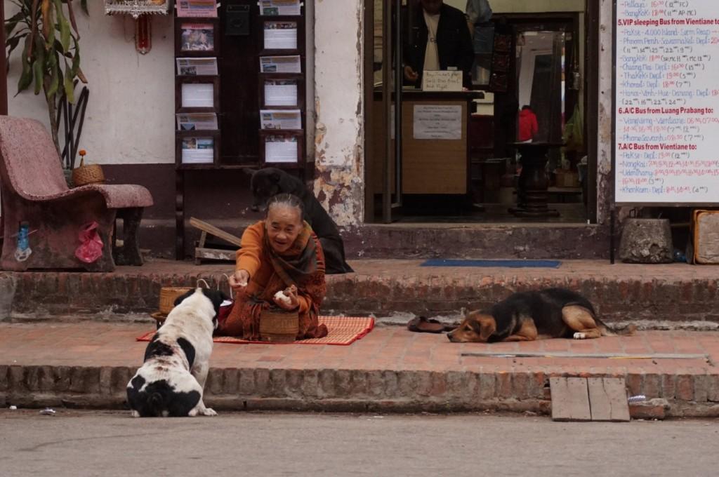 Lao lady feeding leftover alms