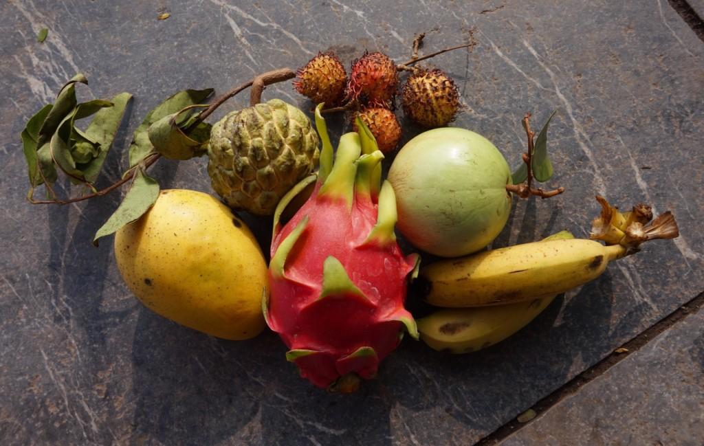 Hanoi fruit mix