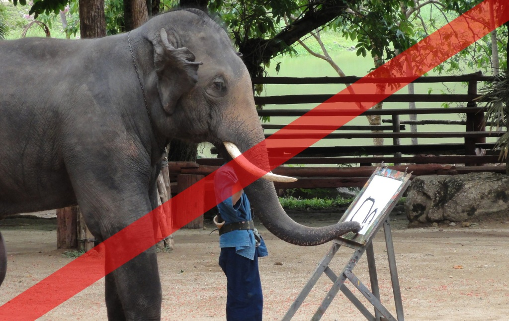 Abusing elephants - painting show