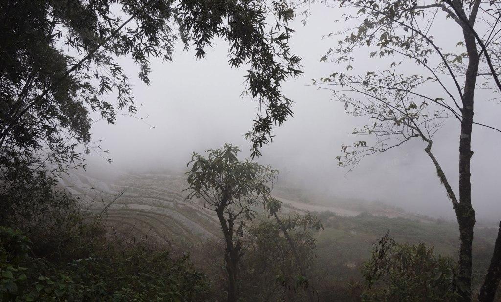 Misty Sapa Vietnam